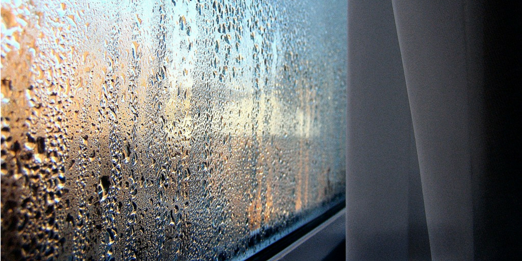 How to Prevent Damp in Your Home During The Winter